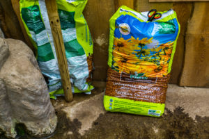 Everything You Need To Know About Potting Soil