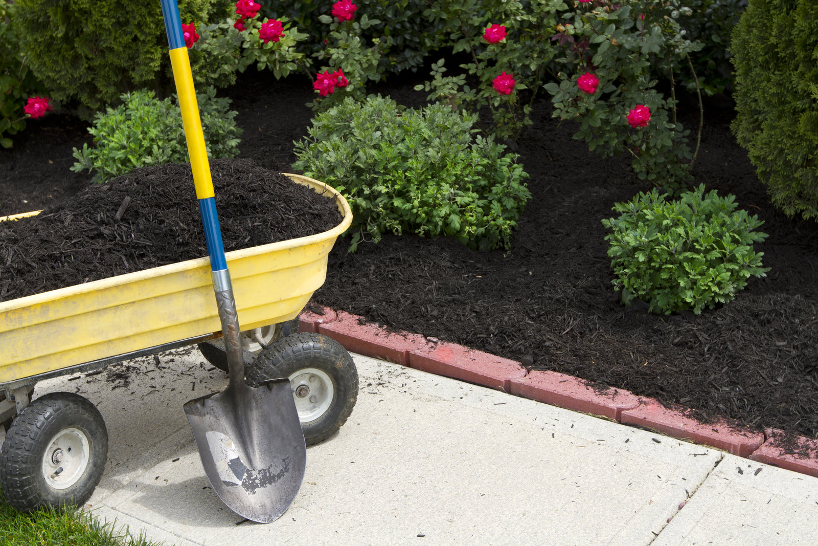 Can You Put New Mulch Over Old Mulch?
