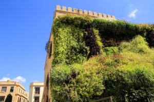 10 Things You Need for A Vertical Garden