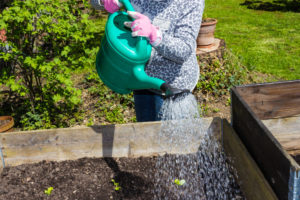 A Guide to Improving Drainage in Your Raised Garden Beds