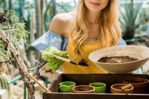 These Are the Best 10 Potting Soils for Indoor Herbs