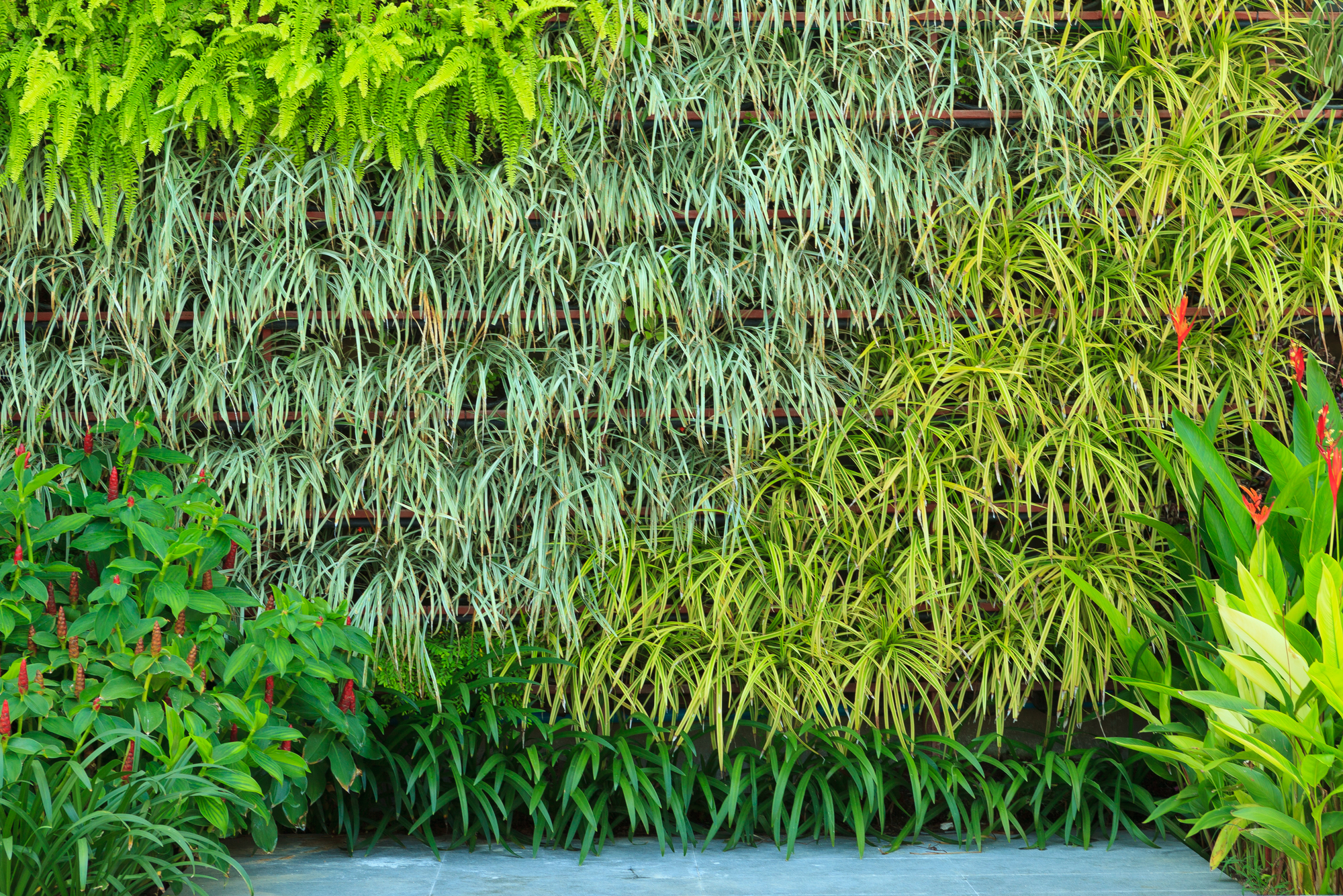 The Vertical Gardening System Explained